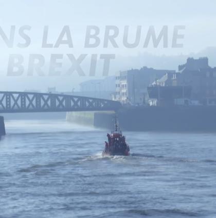 Docu Brexit – L'Info du Vrai